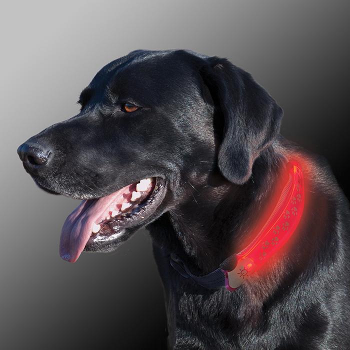 NiteDawg LED Collar Cover Dog photo-NEW